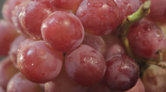 red grapes - stock footage