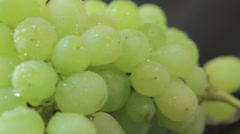 green grapes - stock footage
