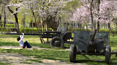 Cannons in the park - stock footage