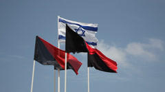 Flag of Israel and Artillery corps Stock Footage