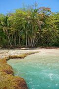 costa rica beach with turquoise water - stock photo