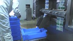 milk  yogurt factory - stock footage