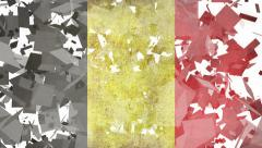 National Transitions  - Belgium Flag-White Stock Footage
