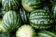 Fresh water-melons Stock Photos