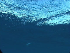 Stock Video Footage of Ocean scenery distant dive boat, choppy seas, on water surface, UP5688
