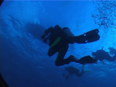 Arm flapper struggling with buoyancy swimming in bluewater, UP5887 Stock Footage