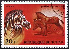 Postage stamp Chad 1972 Zebras, African Wild Animals Stock Photos