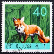 Postage stamp Poland 1965 Red Fox - stock photo