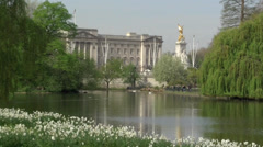 Buckingham Palace from St James Park Stock Footage