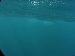 Diver support boat crew on boat on the surface in Fiji Islands, UP6467 Stock Footage