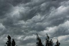Dark storm clouds and tree tops Stock Photos