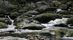 Rock Boulder Filled Wild Streaming River - 29,97FPS NTSC Stock Footage