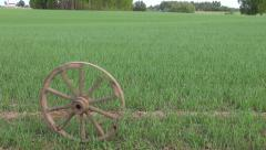 Old horse carriage wheel roll on  crop  field Stock Footage