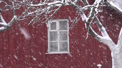 Winter snow snowflake snowing falling near farm house Stock Footage
