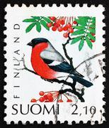 Postage stamp Finland 1991 Eurasian Bullfinch, Bird Stock Photos