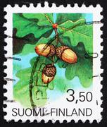 Postage stamp Finland 1990 Acorns, the Fruit of the Oak Tree Stock Photos