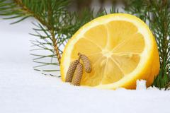 Half of lemon and tiny cones - stock photo