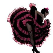 woman dancer dancing french cancan silhouette - stock photo