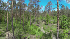 Fly over  spring  wood with  blue sky . Aerial landscape Stock Footage