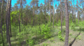 Slow  Fly over  spring  wood with  blue sky . Aerial landscape Footage