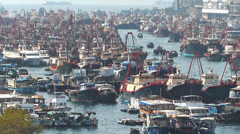 Chinese fishing boats shelter between Apliu Chau and Aberdeen harbor harbour Stock Footage