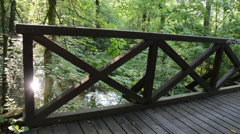 Wooden bridge, panning,handheld Stock Footage