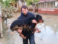 afraid man saves his dog from flood - stock photo
