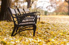 Autumnal park with bench - stock photo