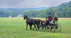 Stock Photo of farmers returning from the amish organic's market in the year in akron, oh, u