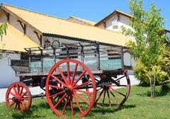 uruguayan dairy farm - stock photo