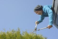 Man trimming hedge from top of roof - stock photo