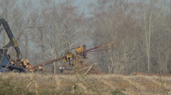 Logging loader 1 Stock Footage