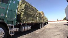 Hay truck alfalfa feed Stock Footage