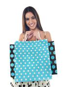 Gorgeous pretty girl holding shopping bags - stock photo