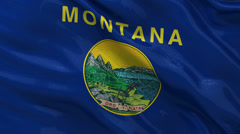 US state flag of Montana - seamless loop Stock Footage