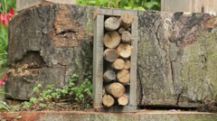 Wooden insect hotel Stock Footage