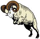 Ram sheep Stock Illustration