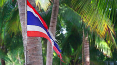 Waving ripped flag of thailand against palm trees Stock Footage