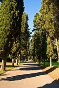 Stock Photo of Via Appia