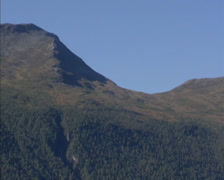 LANGFJORDEN, NORWAY: Pan mountain slope forest along fjord, u shaped valley Stock Footage
