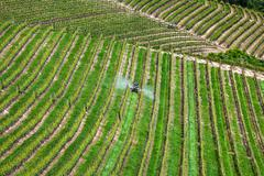 Tractor among vineyards in piedmont, italy. Stock Photos
