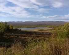 Marsh and peat landscape of Fokstumyra, Norway. Autumn atmosphere. Stock Footage