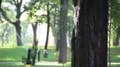 Sprinkler watering the lawn Stock Footage
