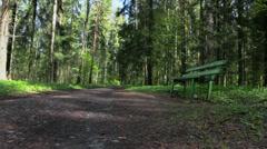 Pavlovsk Park. St. Petersburg. Russia.txt Stock Footage