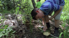 Little Boy Looks At Wild Mushroom, Nearby Younger Brother Stands With Binoculars Stock Footage
