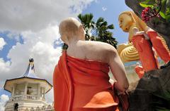 Golden Buddha of Dambulla, Sri Lanka. Stock Photos