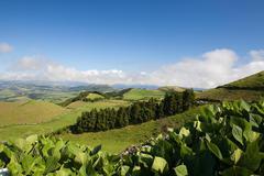 Azores - Sao Miguel Stock Photos