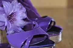 Violet heels with flower on wooden floor Stock Photos