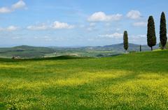 Val d'Orcia (Tuscany) Stock Photos