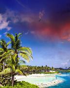 Cloudy Sky above Nassau Vegetation, Bahamas Stock Photos
